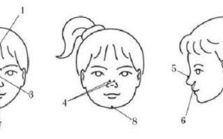 Массаж носа при заложенности точки и техника выполнения, противопоказания
