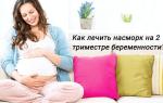 Каланхоэ от насморка у детей: лечебные свойства, правила применения, меры предосторожности