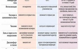 Народные средства от простуды и ОРЗ: лучшие рецепты, особенности применения, меры профилактики