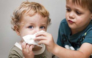 Течет из носа и чихаю — что делать: причины и патологии
