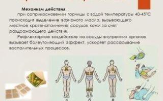 Можно ли ставить горчичники при беременности: особенности применения, побочные действия, меры предосторожности