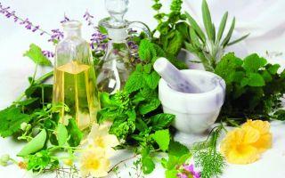 Народные рецепты мазей от насморка и общие рекомендации