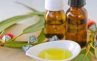 Какую пользу приносят ингаляции с маслом эвкалипта — рекомендации
