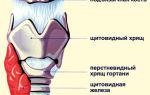 Острый стеноз гортани у взрослых — причины, симптомы, лечение