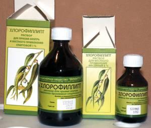 Таблетки, раствор, спрей Хлорофиллипт инструкция по применению