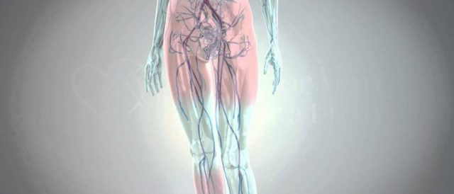 Признаки гиперемии, принцип возникновения, диагностика и лечение