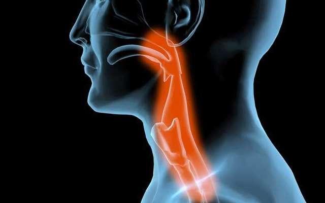 Как и чем лечить ожог горла и гортани: причины и симптомы