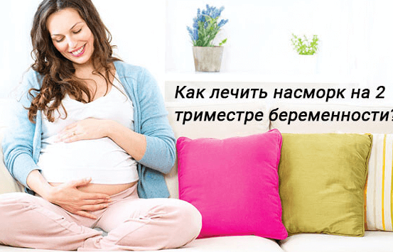 Каланхоэ от насморка у детей лечебные свойства при насморке, применение