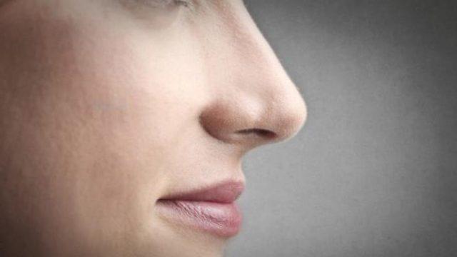 органы обоняния человека - способы восстановления обоняния