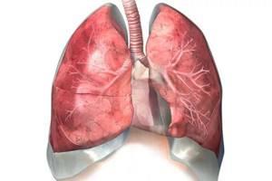 Скрип во время дыхания. Свистящее дыхание и его лечение